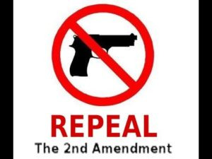 Calls to repeal the 2nd Amendment.